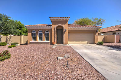 Chandler Single Family Home For Sale: 2306 E Balsam Drive