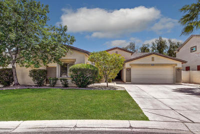Mesa Single Family Home For Sale: 1221 E Kramer Circle