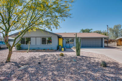 Phoenix Single Family Home For Sale: 1125 W Medlock Drive