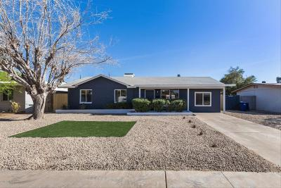 Tempe Single Family Home For Sale: 1241 E Valerie Drive