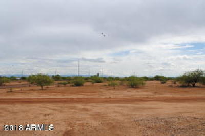 Residential Lots & Land For Sale: E Gecko Ranch Road
