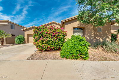 Chandler AZ Single Family Home For Sale: $409,000