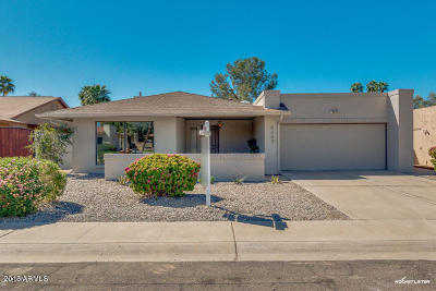 Scottsdale Single Family Home For Sale: 8603 E San Alfredo Drive