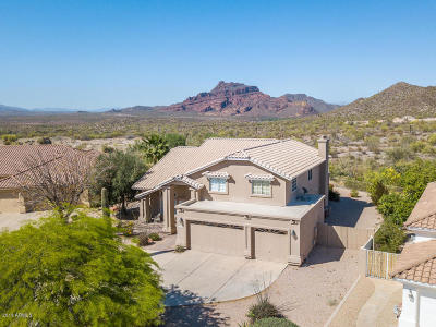 Mesa,  San Tan Valley,  Queen Creek, Gold Canyon Single Family Home For Sale: 6026 E Viewmont Drive