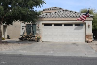 Single Family Home For Sale: 39391 N Marla Circle