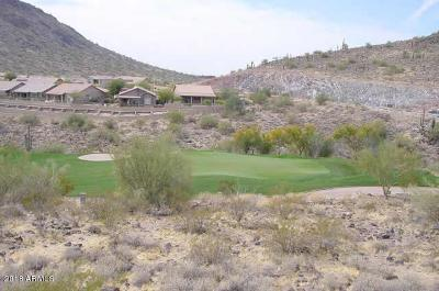 Fountain Hills Residential Lots & Land For Sale: 9845 N Solitude Canyon
