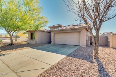 Phoenix Single Family Home For Sale: 6630 S 23rd Avenue