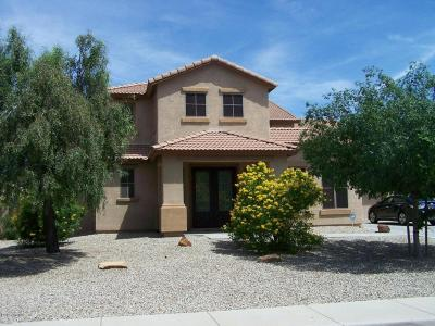 San Tan Valley Single Family Home For Sale: 32121 N Chestnut Trail