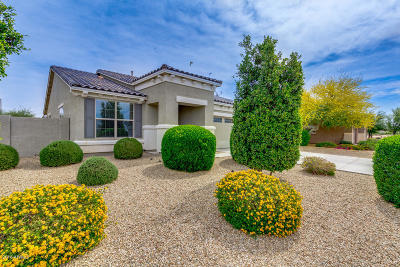 Goodyear Rental For Rent: 15228 W Westview Drive