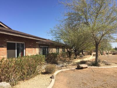 Phoenix Single Family Home For Sale: 1044 E Irvine Road