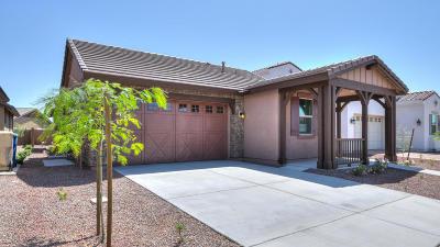 Buckeye Single Family Home For Sale: 4689 N 207th Avenue