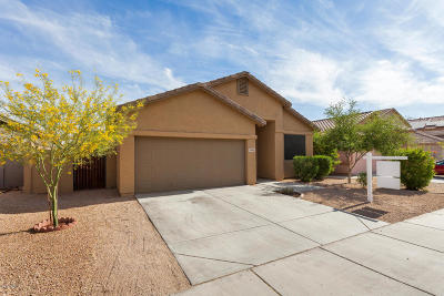 Goodyear Single Family Home For Sale: 18165 W Canyon Lane