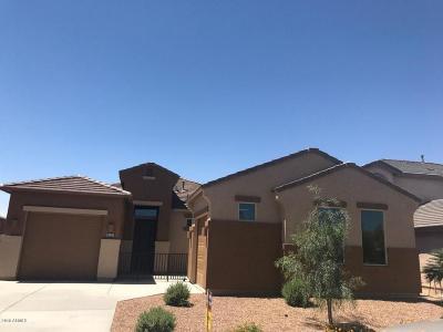 Maricopa Single Family Home For Sale: 20142 N Jones Drive