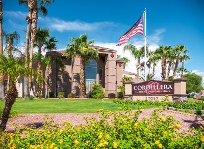 Phoenix Rental For Rent: 17017 N 12th Street #2115