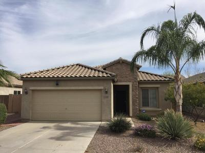 Mesa Single Family Home For Sale: 11113 E Sorpresa Avenue