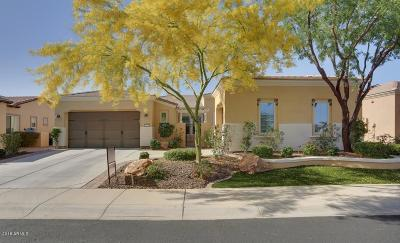 Peoria Single Family Home For Sale: 12954 W Lone Tree Trail