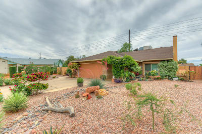 Chandler Single Family Home For Sale: 3118 N Yucca Street