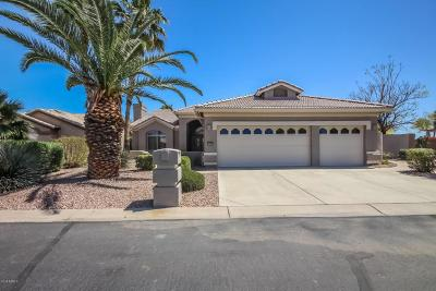 Goodyear Single Family Home For Sale: 15321 W Catalina Court