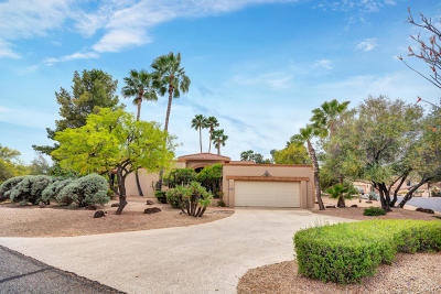 Rio Verde Single Family Home For Sale: 18611 E Avenida Del Ray