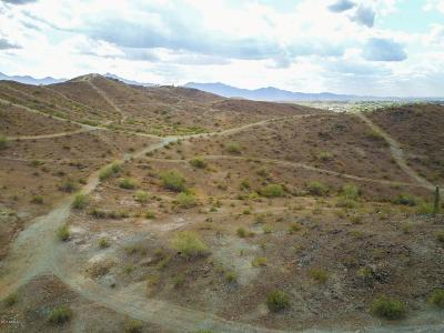 Laveen Residential Lots & Land For Sale: 10520 S 35th Avenue