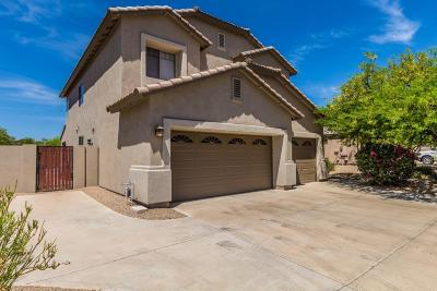 Cave Creek Single Family Home For Sale: 4702 E Brilliant Sky Drive