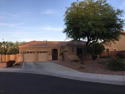 Goodyear Single Family Home For Sale: 69 S 167th Drive