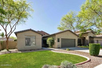 Gilbert Single Family Home For Sale: 1683 E Park Avenue