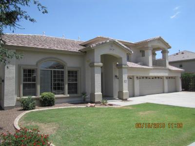 Litchfield Park Single Family Home For Sale: 12942 W Apodaca Drive