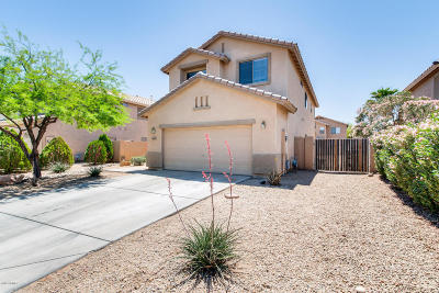 Surprise Single Family Home For Sale: 13457 W Gelding Drive