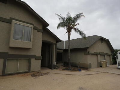 Cave Creek Single Family Home For Sale: 6033 E Skinner Drive