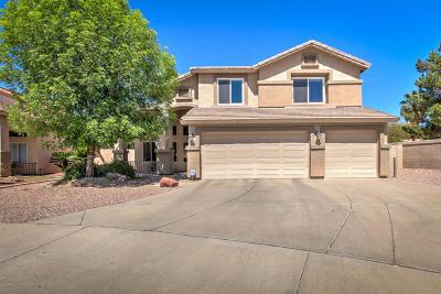 Mesa Single Family Home For Sale: 5658 E Grove Circle