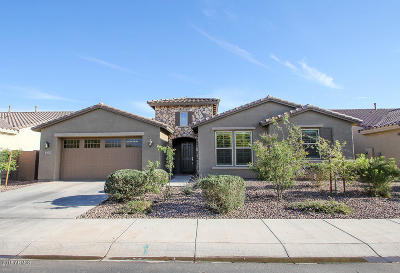 Gilbert Single Family Home For Sale: 3671 E Narrowleaf Drive