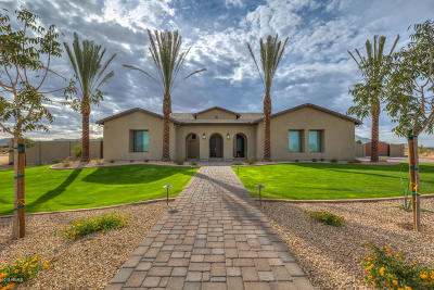 Queen Creek Single Family Home For Sale: 24494 S 190th Court