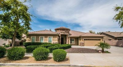 Crismon Heights Single Family Home For Sale: 21778 E Escalante Road