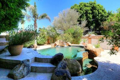 Scottsdale Condo/Townhouse For Sale: 7955 E Chaparral Road #64