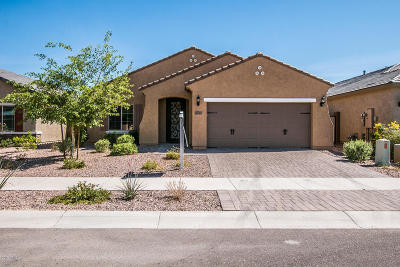 Phoenix Single Family Home For Sale: 2547 W Golden Puma Trail