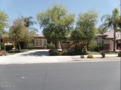 Queen Creek Single Family Home For Sale: 21353 S 185th Way