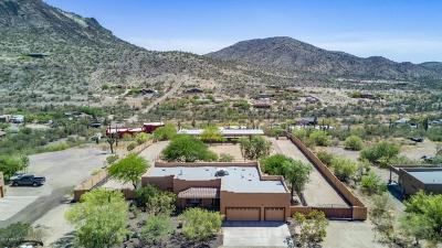 New River AZ Single Family Home For Sale: $550,000