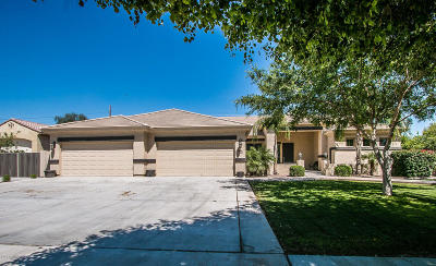 Queen Creek Single Family Home For Sale: 20849 S Hadrian Way