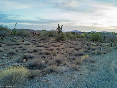 Scottsdale Residential Lots & Land For Sale: 13145 E Summit Drive
