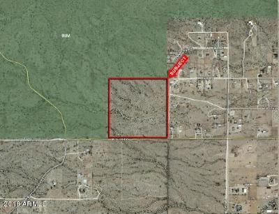 Queen Creek Residential Lots & Land For Sale: W Judd Road