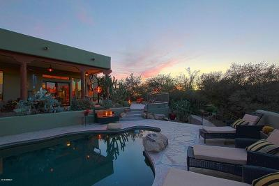Cave Creek Single Family Home For Sale: 38844 N Spur Cross Road