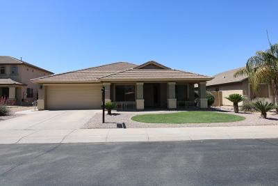 Maricopa Single Family Home For Sale: 43518 W Hillman Drive