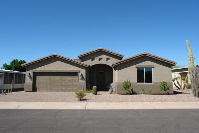 Mesa Single Family Home For Sale: 2464 N Snead Drive