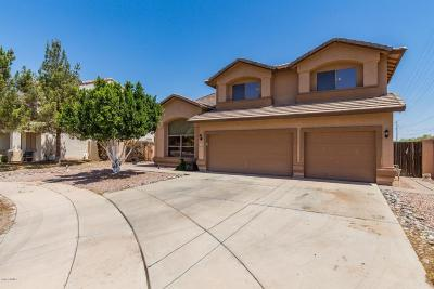 Mesa Single Family Home For Sale: 3149 S 96th Circle