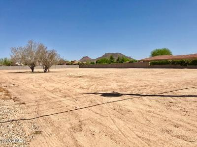Peoria Residential Lots & Land For Sale: 6900 W Pinnacle Peak Road