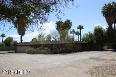Phoenix Single Family Home For Sale: 6729 N 7th Street
