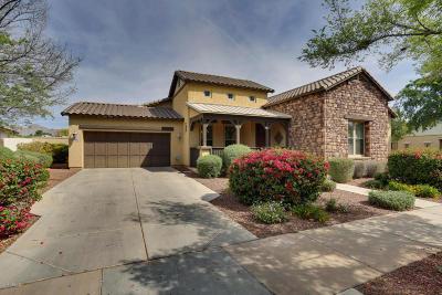 Buckeye Single Family Home For Sale: 20452 W Springfield Street