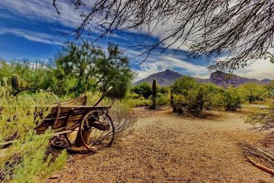 Paradise Valley Residential Lots & Land For Sale: 6800 N Mummy Mountain Road