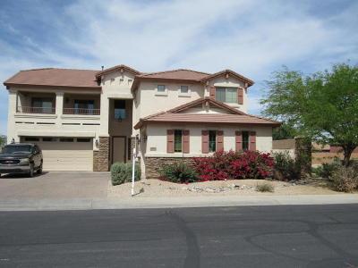 Casa Grande Single Family Home For Sale: 1975 N Maria Avenue